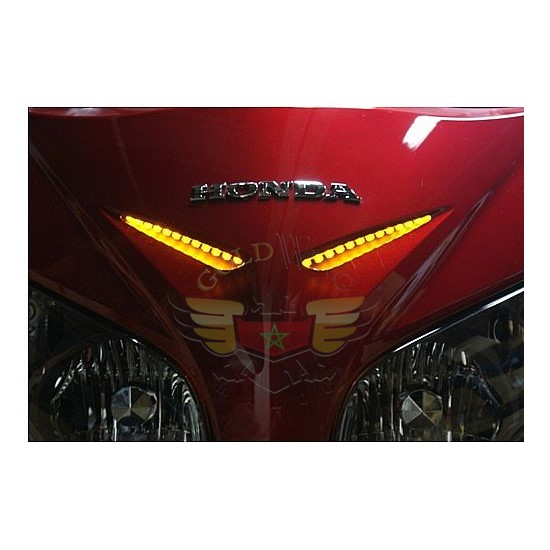 1800 Windshield & front fairing garnish light -1800 Windshield & front fairing garnish light